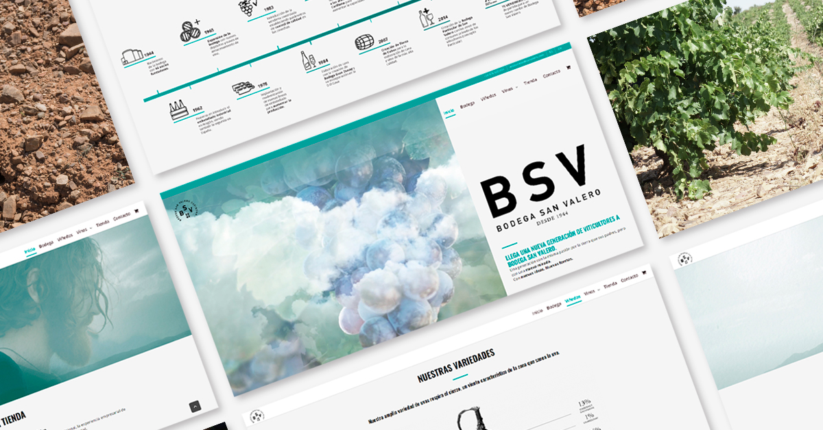 Bodega San Valero renueva su web para ofrecer una imagen más actual y versátil de sus vinos